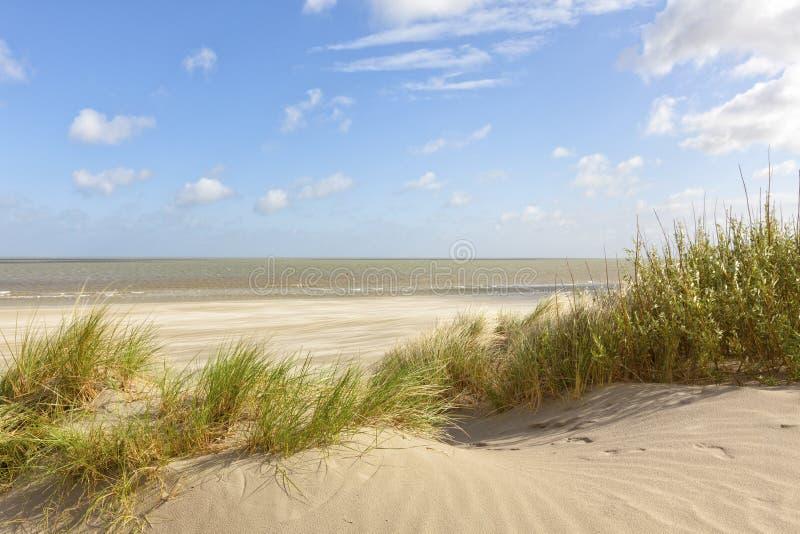 Belgian North Sea beach at Knokke-Heist stock photo