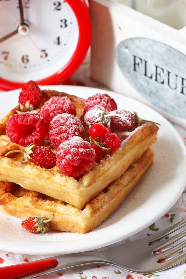 Belgian waffle. royalty free stock images