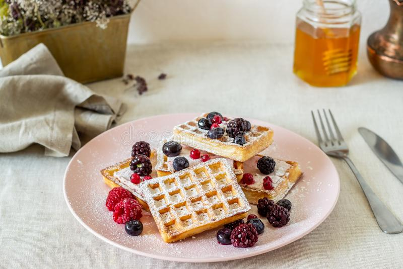 Belgian waffles with berries and honey. National cuisine royalty free stock image