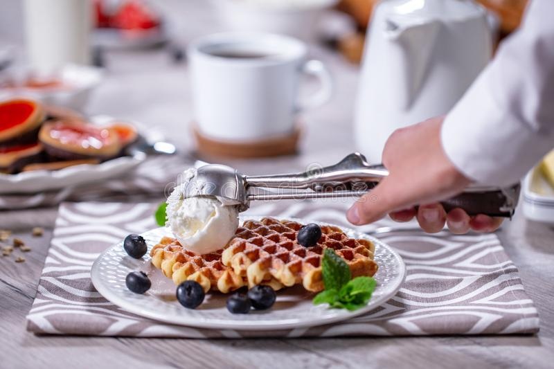 Belgian waffles with blueberry and ice cream royalty free stock photo