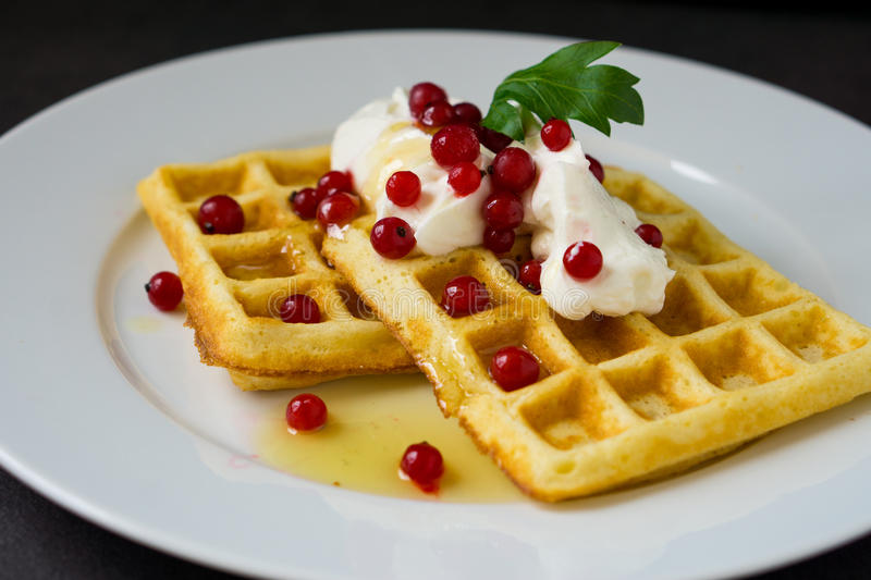 Belgian waffles with cream and red currant stock photo