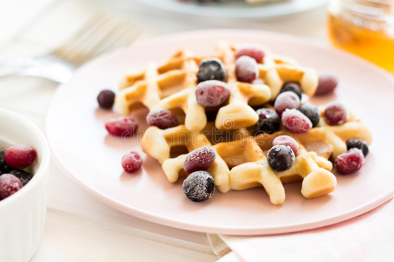 Belgian waffles with honey and frozen berries royalty free stock photography