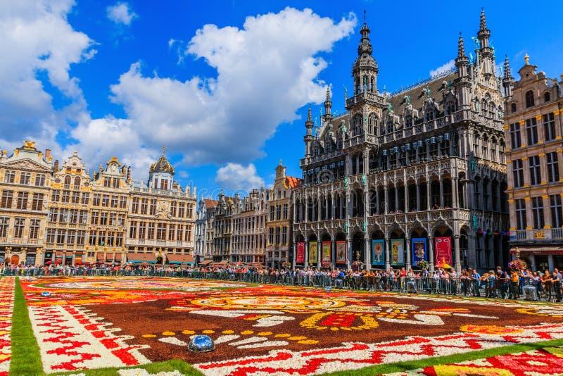 Belgien brussels Grand Place i en solig dag arkivbild