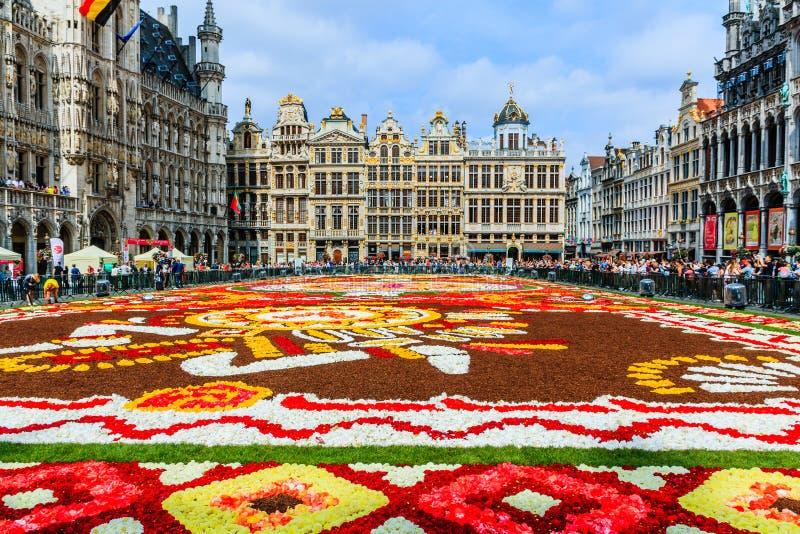 Belgien brussels Grand Place under blommamattfestival royaltyfri foto