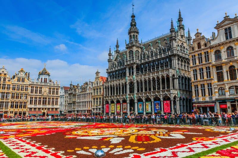 Belgien brussels Maison du Roi och Grand Place royaltyfri bild