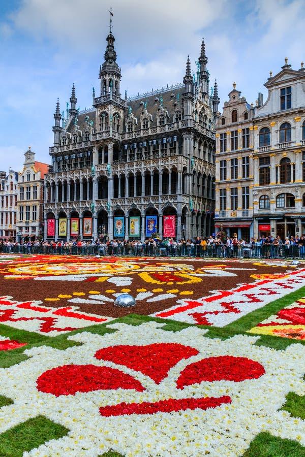 Belgien brussels Maison du Roi under blommamattfestival royaltyfria foton