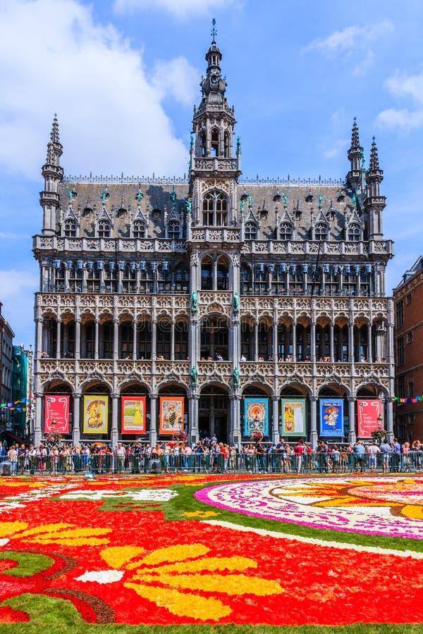 Belgien brussels Maison du Roi under blommamattfestival royaltyfri foto
