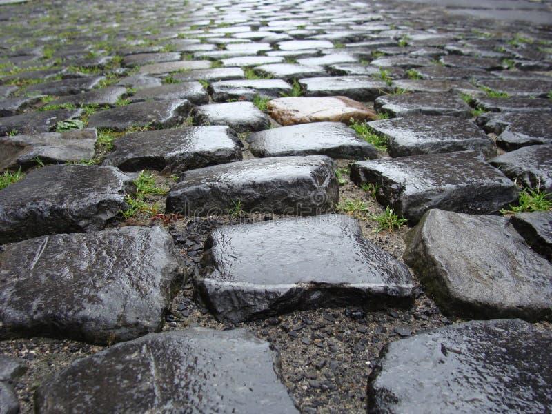 belgijski cobble flemish deszczu kamień mokry zdjęcia stock
