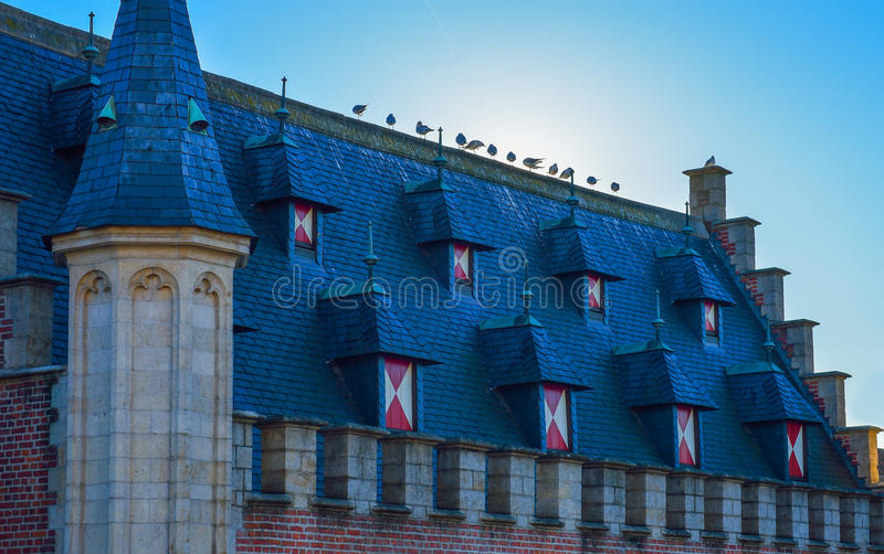 Belgische Gebäudedacharchitektur in Gent, Belgien lizenzfreie stockfotos