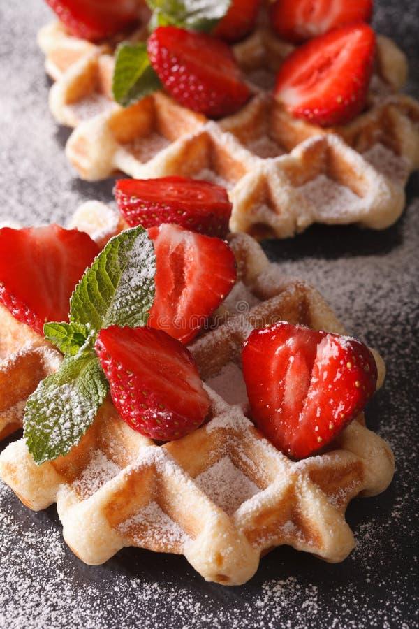 Belgische wafels met aardbeien en bestrooid met gepoederde su stock foto