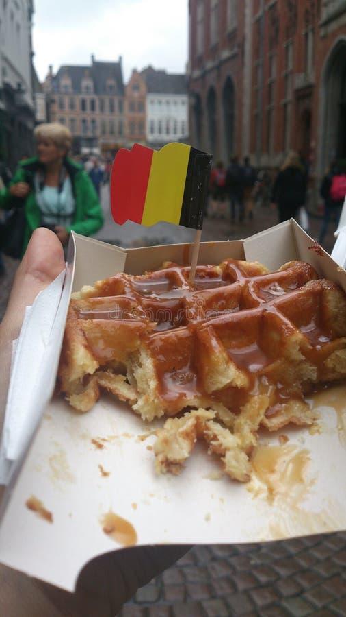 Belgisk dillande, Brugge arkivfoto