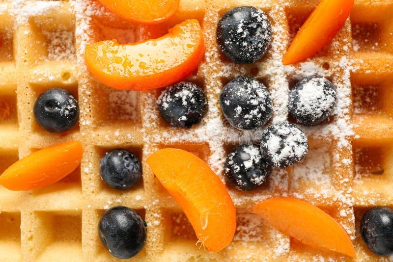 Belgisk dillande med frukter och pudrat socker royaltyfri bild