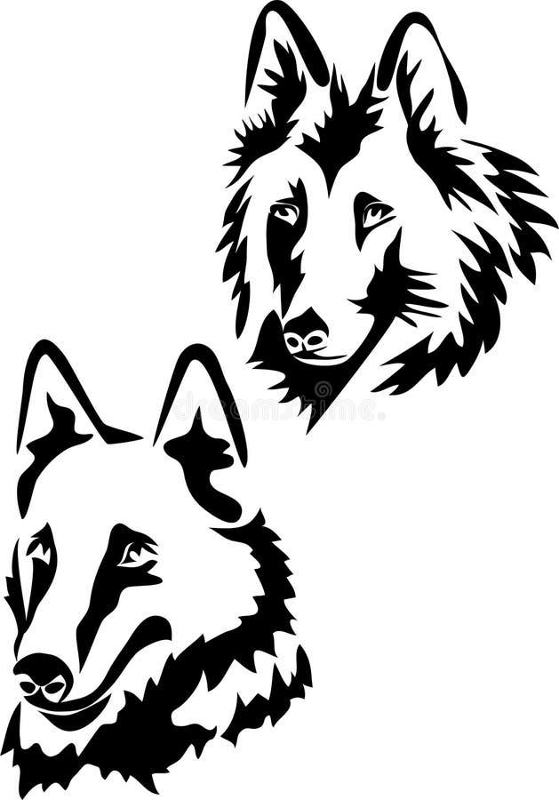 Belgiskt herdehundhuvud stock illustrationer