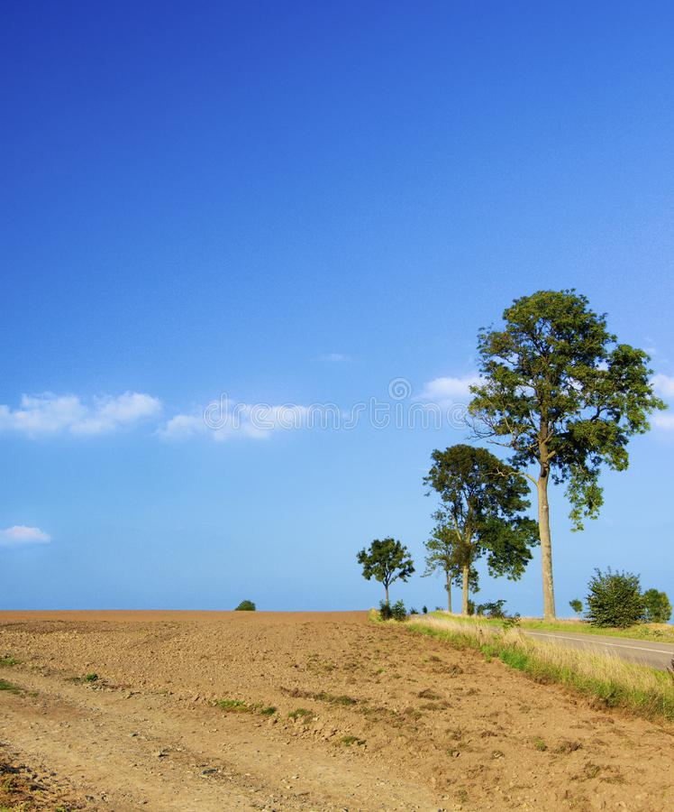 Belgium Rustic Landscape. With Clay Field, Country Road and Trees against Blue Sky Outdoors royalty free stock images