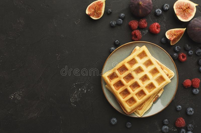 Belgium waffles with berries and fruits stock image