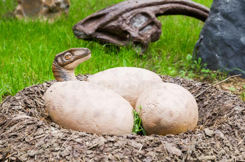Belgorod, Russia, 20 may 2018 - Dinosaur Park, model clutches of dinosaur eggs with valuewise cub.  stock photo