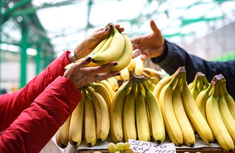 Belgrad Serbien 10 16 2018 Verkäufe des frischen und organischen Gemüses und der Früchte am grünen Markt oder am Landwirtmarkt in lizenzfreies stockfoto