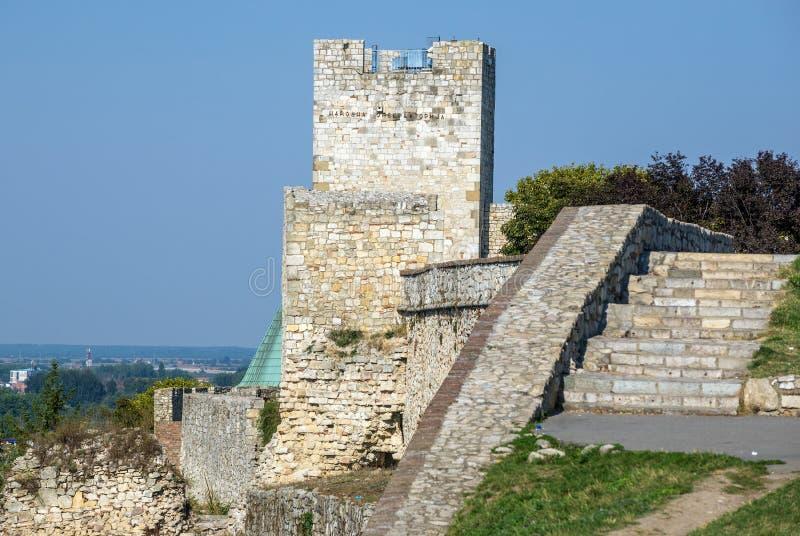 Belgrade i Serbien royaltyfri foto