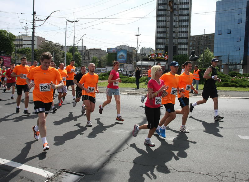 Belgrade Marathon 2014. stock image