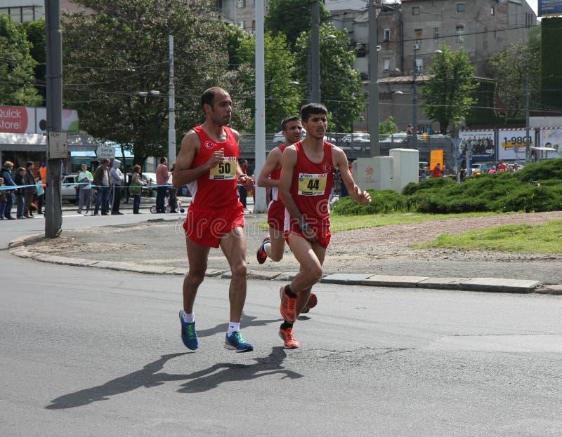 Belgrade maraton 2014 royaltyfri bild