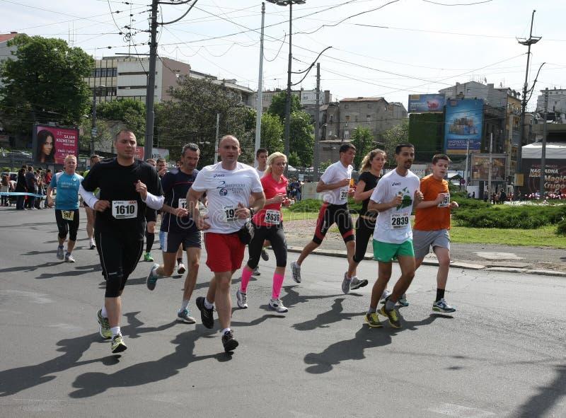 Belgrade maraton 2014 fotografia royalty free