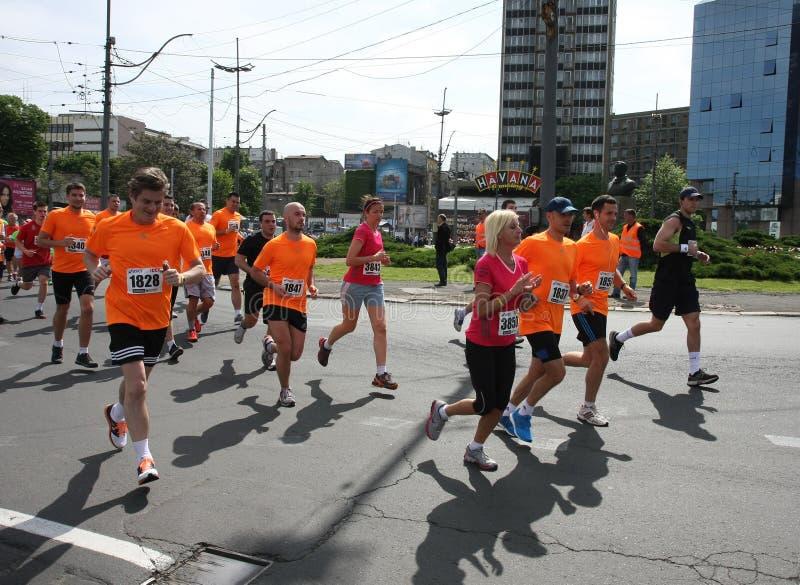 Belgrade maraton 2014 obraz stock