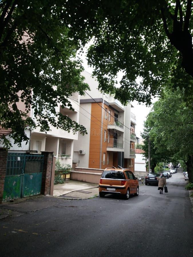 Belgrade - parc Sumice photographie stock libre de droits