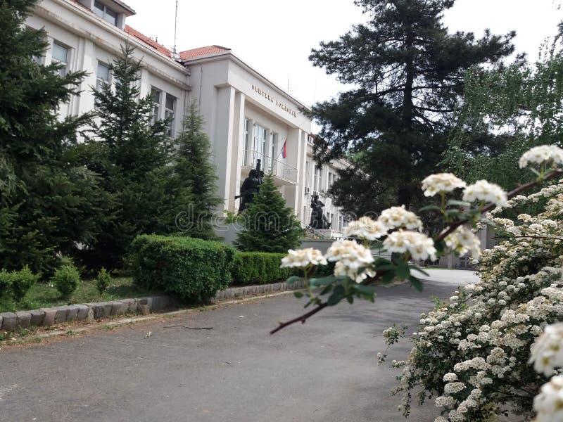 Belgrade - Vozdovac photos libres de droits