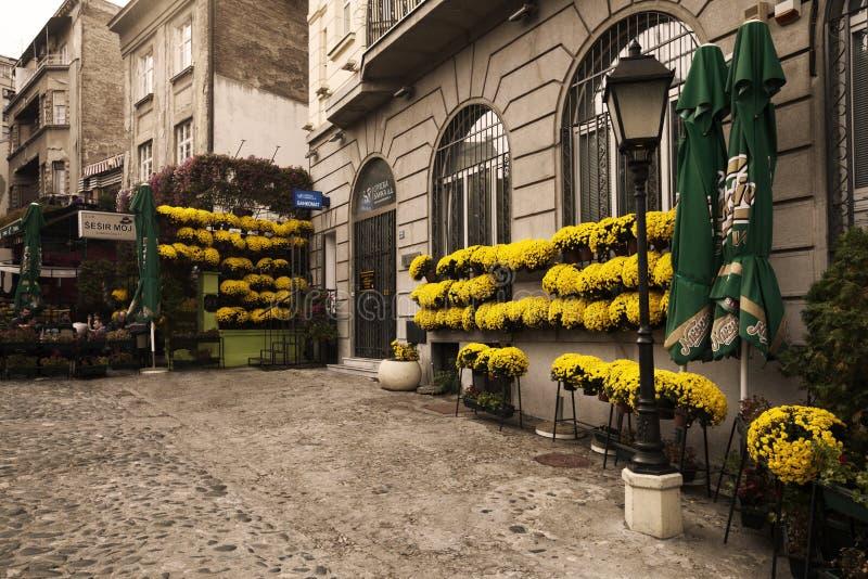 Belgrado, Sérvia - 12 de outubro de 2013: Skadarlija fotos de stock