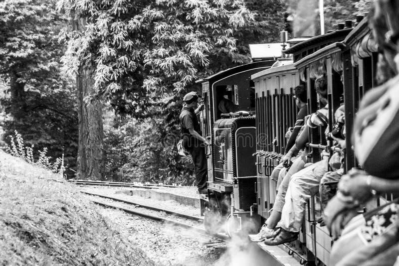 Belgrave, Victoria, Australia - 7 de enero de 2009: Tren del vapor de Billy que sopla con los pasajeros Ferrocarril estrecho hist fotos de archivo libres de regalías
