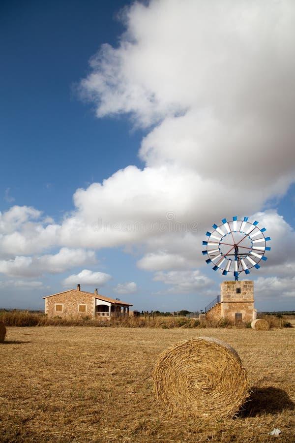 beli gospodarstwa rolnego siana wiatraczek zdjęcie stock