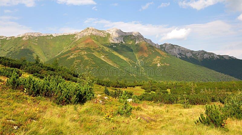Belianske Tatras, Eslovaquia, Europa fotografía de archivo libre de regalías