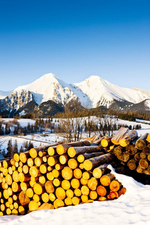 Belianske Tatry, Slovacchia fotografie stock