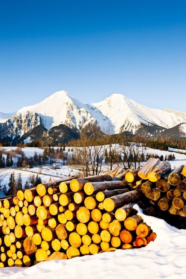 Belianske Tatry, Slovakien arkivfoton