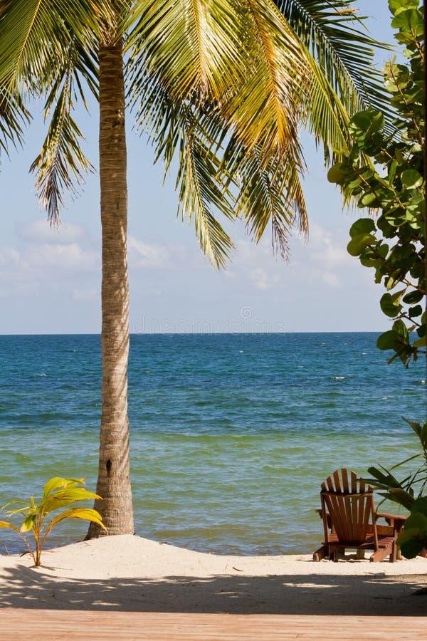 Belice, playa tropical imagen de archivo libre de regalías