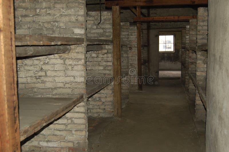 Beliches do tijolo em Auschwitz II - Birkenau imagem de stock