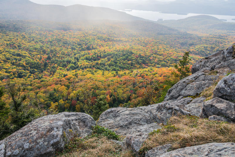 Belichteter Autumn Colors Shrouded In Rain-Nebel lizenzfreie stockfotografie