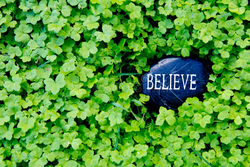Believe - text on stone in green clover royalty free stock image