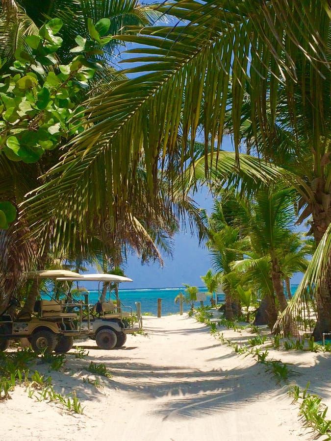 Belize. Ambergris Caye, Belize Caribbean travel stock photo