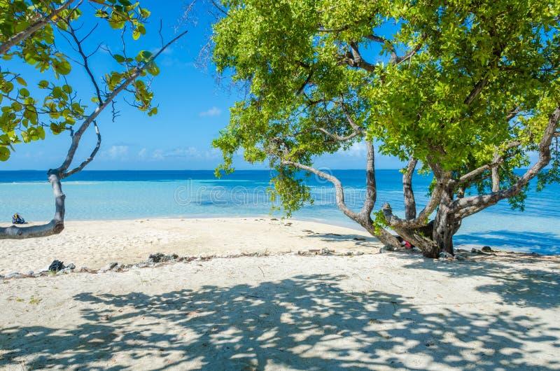 Belize Cayes zna? dla nurkowa?, snorkeling i relaksowa?, by? na wakacjach - Ma?a tropikalna wyspa przy bariery raf? z raj pla?? - zdjęcia stock