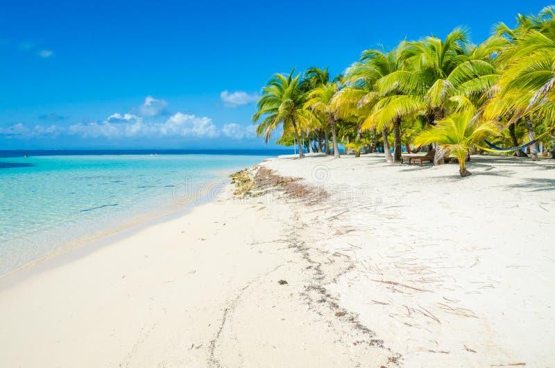 Belize Cayes zna? dla nurkowa?, snorkeling i relaksowa?, by? na wakacjach - Ma?a tropikalna wyspa przy bariery raf? z raj pla?? - zdjęcia royalty free