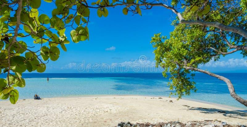 Belize Cayes zna? dla nurkowa?, snorkeling i relaksowa?, by? na wakacjach - Ma?a tropikalna wyspa przy bariery raf? z raj pla?? - zdjęcie stock
