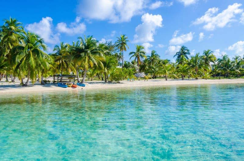 Belize Cayes zna? dla nurkowa?, snorkeling i relaksowa?, by? na wakacjach - Ma?a tropikalna wyspa przy bariery raf? z raj pla?? - zdjęcie royalty free