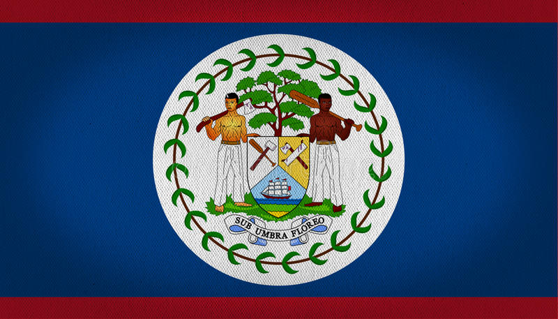 Belize flag. Flag of belize, composed by a big white circle in teh center with a logo showing two workers, in the center a tree and a shield with some tools and vector illustration