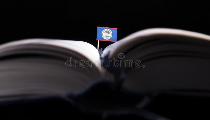 Download Belize-Flagge Mitten In Dem Buch Stockfoto - Bild von geschäft, masse: 96934312