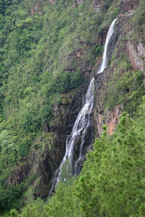 Belize waterfall stock image