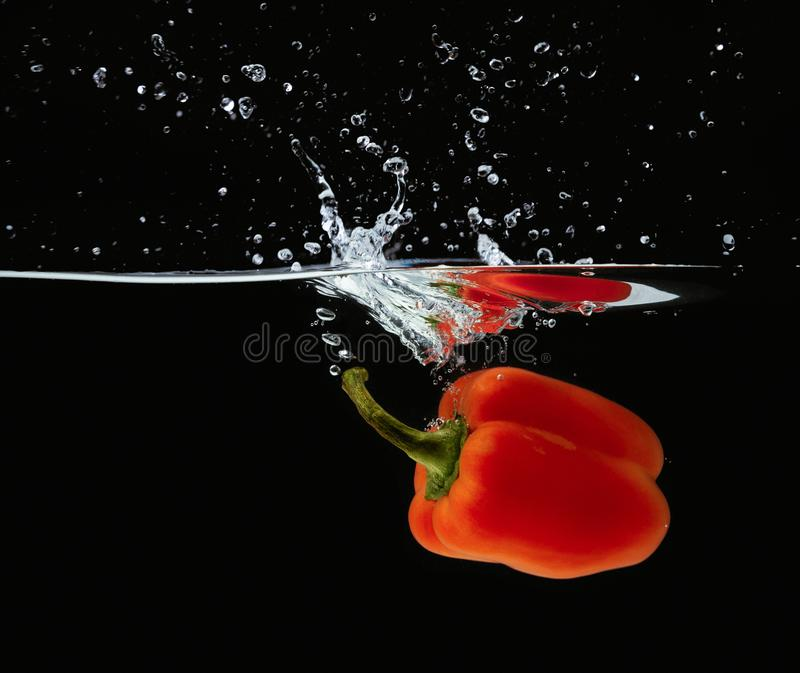 Colored orange paprika in water splashes on black background stock images