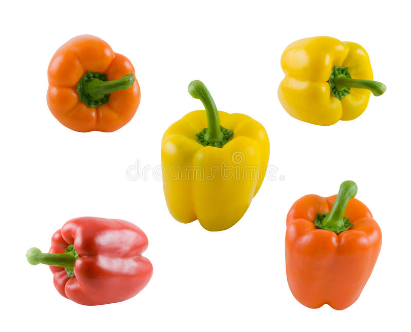 Bell peppers. A collection of different color bell peppers isolated on white background royalty free stock images