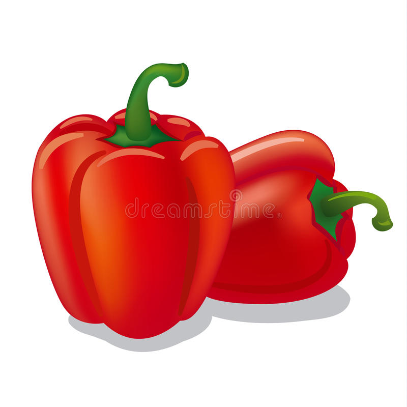 Bell peppers stock illustration