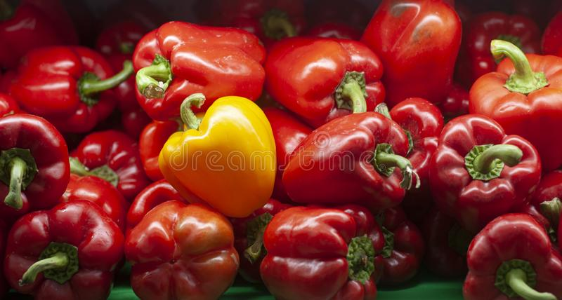 Bell Peppers stack of colors in supermarkets stock photo